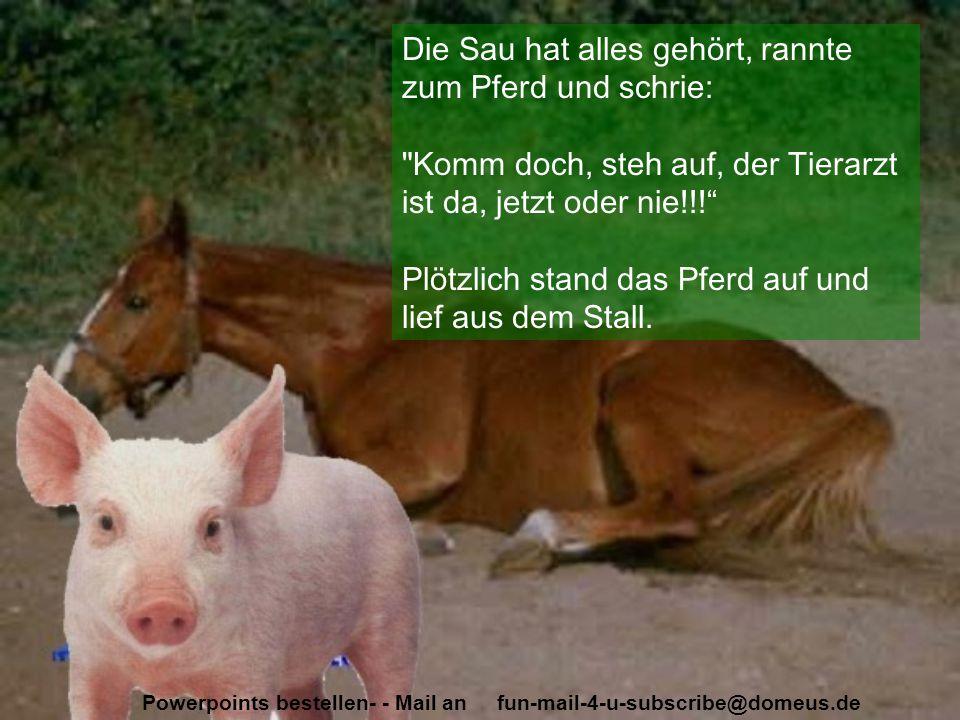Powerpoints bestellen- - Mail an fun-mail-4-u-subscribe@domeus.de Die Sau hat alles gehört, rannte zum Pferd und schrie: