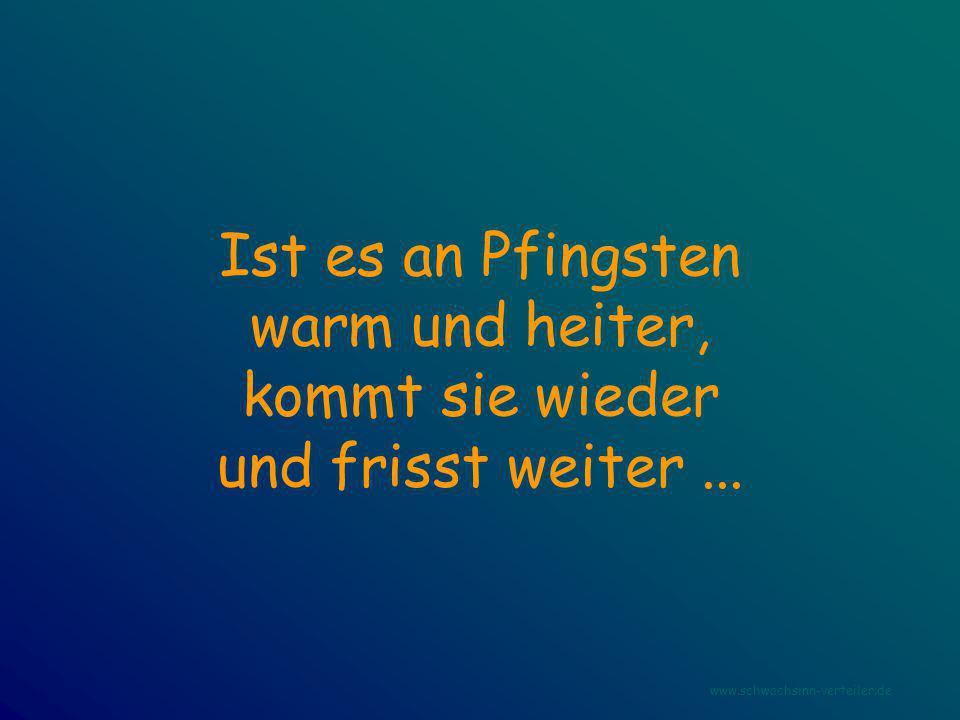 Ist es an Pfingsten warm und heiter, kommt sie wieder und frisst weiter... www.schwachsinn-verteiler.de