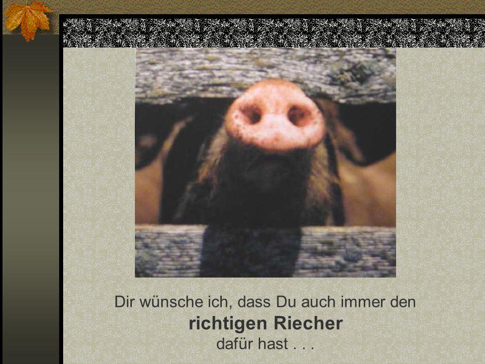 Dir wünsche ich einen ganzen Korb voll Schwein bei allem, was Du noch vorhast...