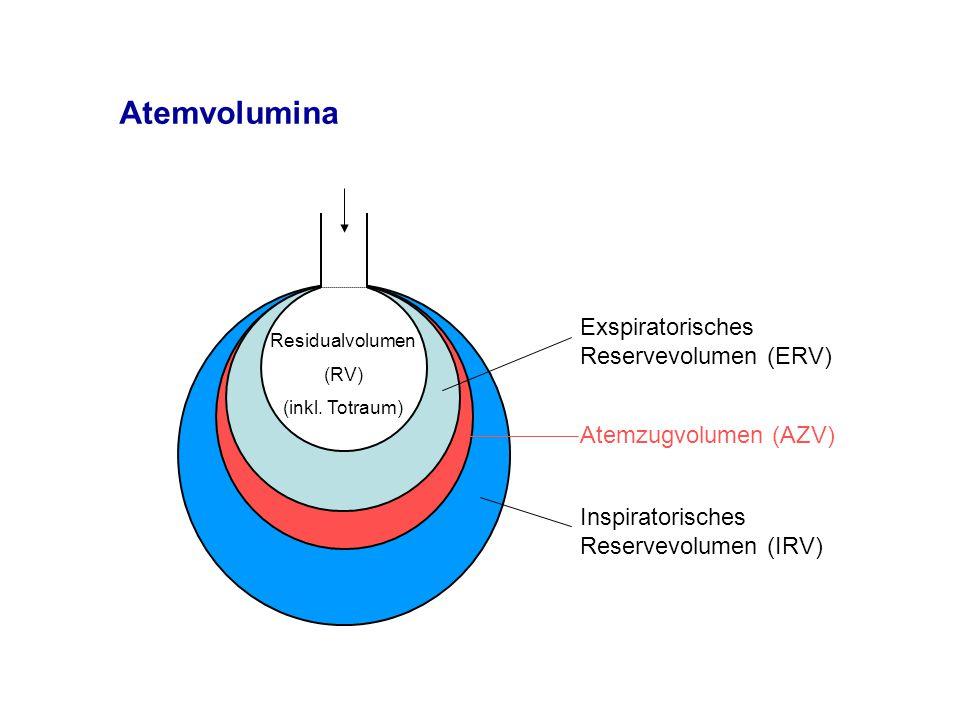 Atemvolumina Exspiratorisches Reservevolumen (ERV) Inspiratorisches Reservevolumen (IRV) Residualvolumen (RV) (inkl.