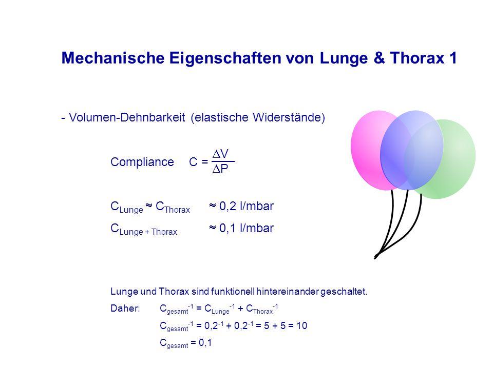 Mechanische Eigenschaften von Lunge & Thorax 1 - Volumen-Dehnbarkeit (elastische Widerstände) Compliance C = C Lunge  C Thorax  0,2 l/mbar C Lunge + Thorax  0,1 l/mbar Lunge und Thorax sind funktionell hintereinander geschaltet.