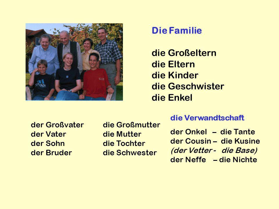 Die Familie die Großeltern die Eltern die Kinder die Geschwister die Enkel der Großvater der Vater der Sohn der Bruder die Großmutter die Mutter die T