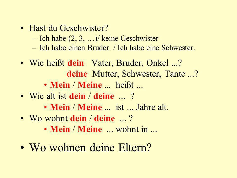 Hast du Geschwister? –Ich habe (2, 3, …)/ keine Geschwister –Ich habe einen Bruder. / Ich habe eine Schwester. Wie heißt dein Vater, Bruder, Onkel...?