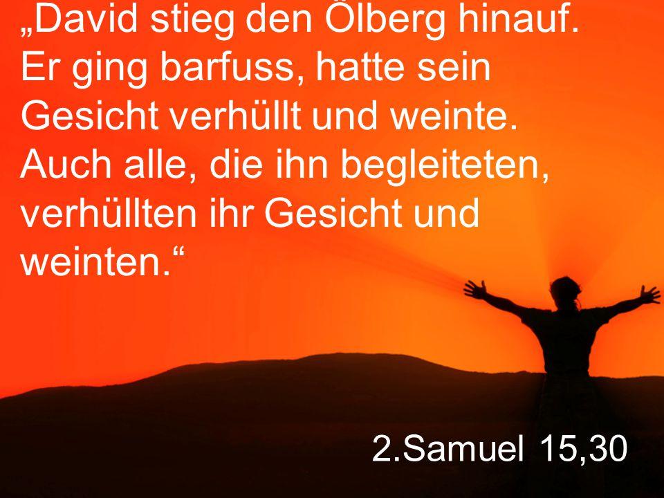 "2.Samuel 15,30 ""David stieg den Ölberg hinauf."