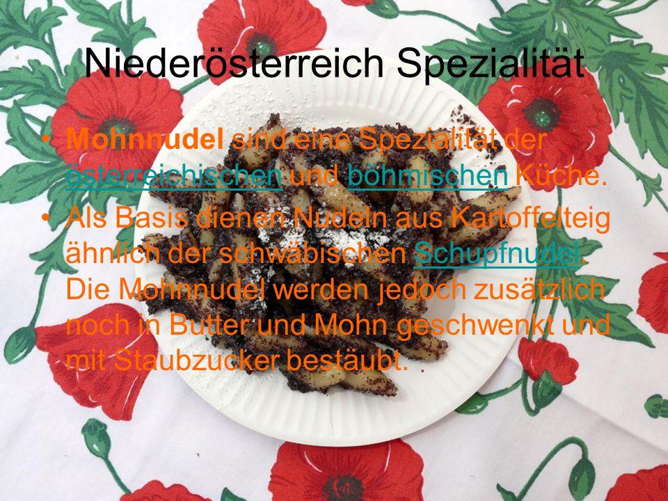 Niederösterreich Spezialität Mohnnudel sind eine Spezialität der österreichischen und böhmischen Küche. österreichischenböhmischen Als Basis dienen Nu