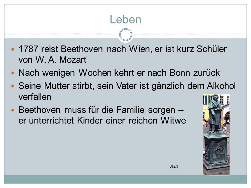 Leben 1792 lädt ihn Joseph Haydn nach Wien Er bildet sich hier bei ihm weiter Durch die Hilfe verschiedener adliger Familien gelingt es ihm in Wien Fuβ zu fassen Bald findet er ein wohlhabendes Publikum Beethoven kann als freischaffender Künstler leben Für seine Kompositionen, seinen Unterricht wurde ihm bezahlt, was er verlangte Er konnte gut von seiner Musik leben
