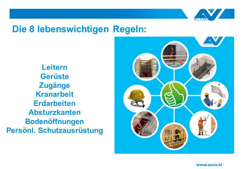 Die 8 lebenswichtigen Regeln: Leitern Gerüste Zugänge Kranarbeit Erdarbeiten Absturzkanten Bodenöffnungen Persönl. Schutzausrüstung