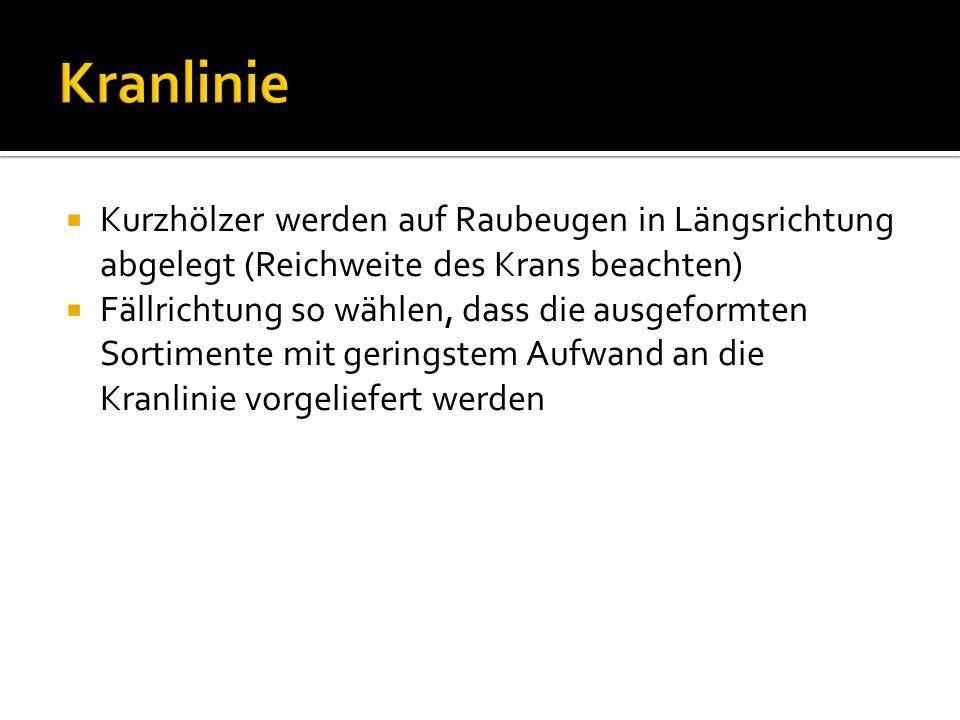  Kurzhölzer werden auf Raubeugen in Längsrichtung abgelegt (Reichweite des Krans beachten)  Fällrichtung so wählen, dass die ausgeformten Sortimente