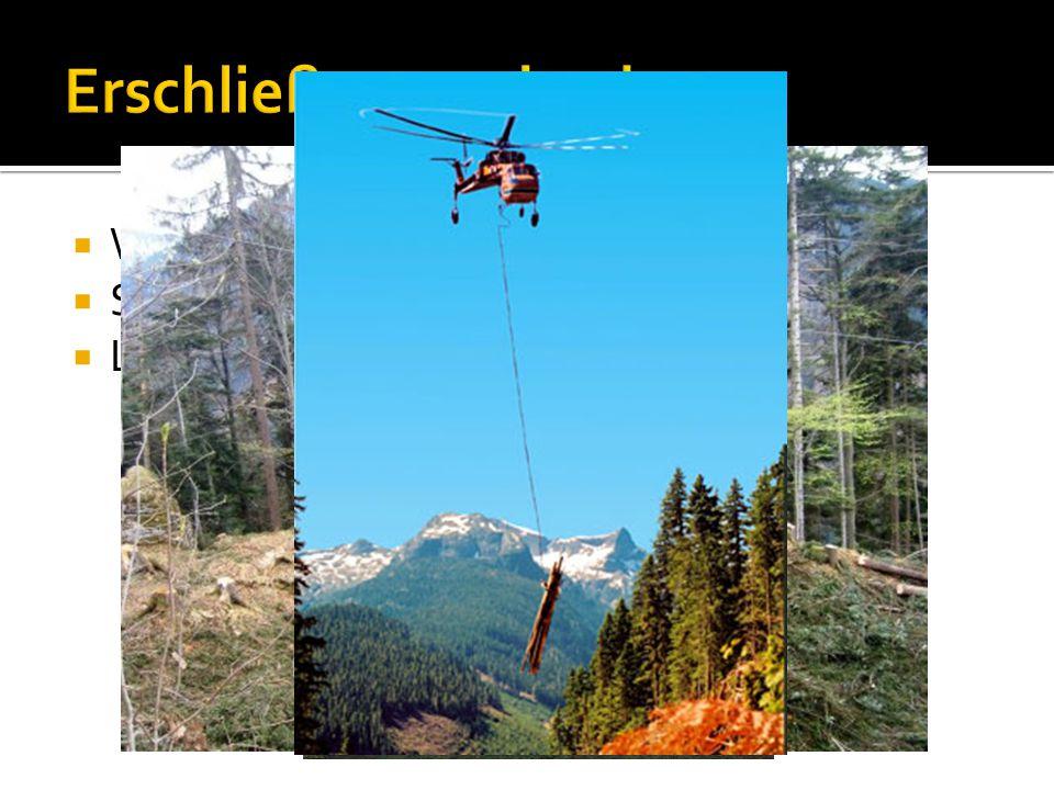  Waldwege  Seilanlagen  Luftfahrzeuge