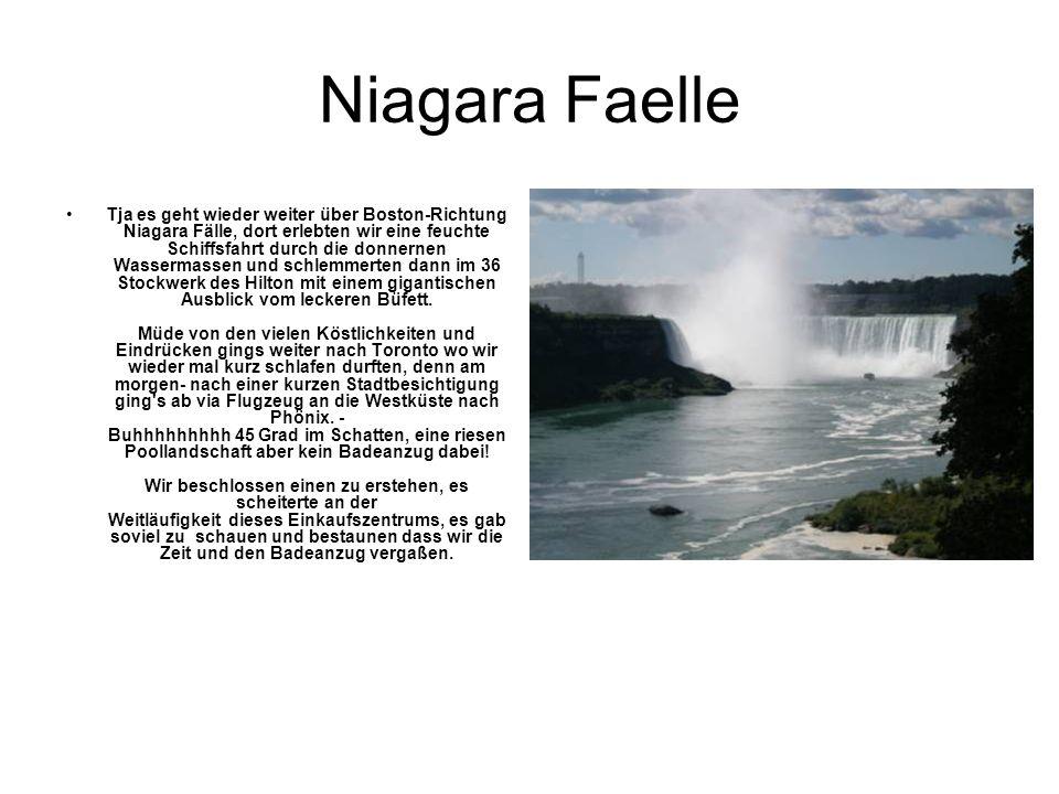 Niagara Faelle Tja es geht wieder weiter über Boston-Richtung Niagara Fälle, dort erlebten wir eine feuchte Schiffsfahrt durch die donnernen Wassermassen und schlemmerten dann im 36 Stockwerk des Hilton mit einem gigantischen Ausblick vom leckeren Büfett.