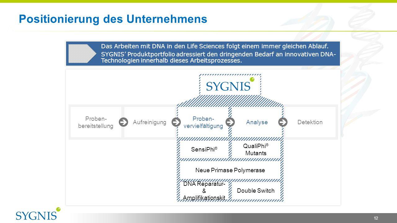 Positionierung des Unternehmens 12 Das Arbeiten mit DNA in den Life Sciences folgt einem immer gleichen Ablauf. SYGNIS' Produktportfolio adressiert de
