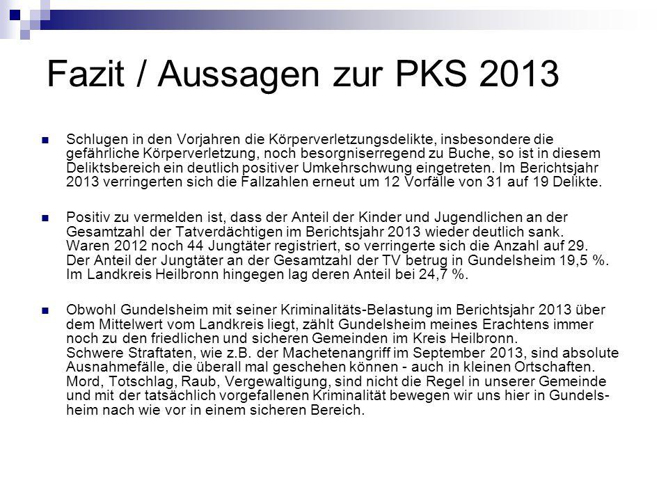 Fazit / Aussagen zur PKS 2013 Schlugen in den Vorjahren die Körperverletzungsdelikte, insbesondere die gefährliche Körperverletzung, noch besorgniserr