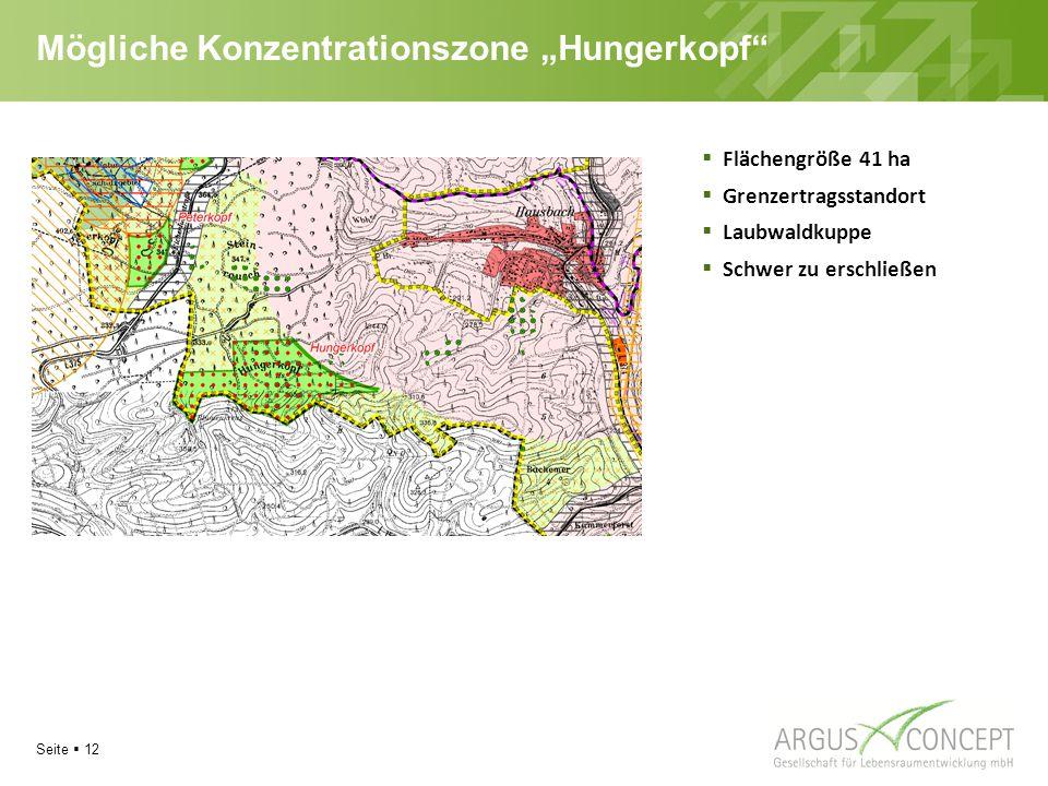 """Seite  12 Mögliche Konzentrationszone """"Hungerkopf  Flächengröße 41 ha  Grenzertragsstandort  Laubwaldkuppe  Schwer zu erschließen"""