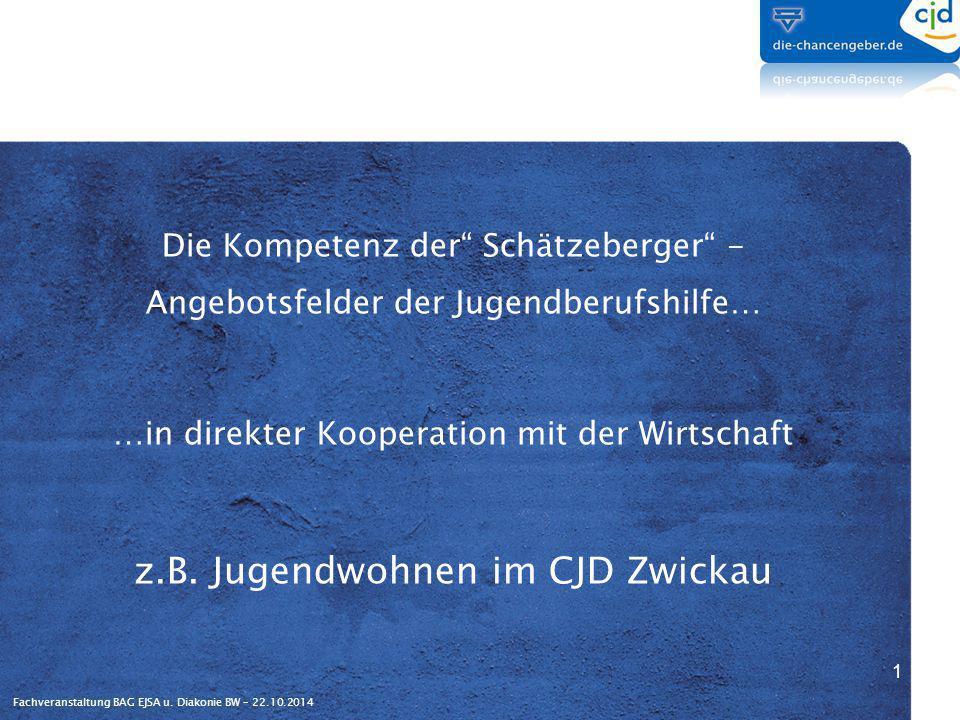 """Fachveranstaltung BAG EJSA u. Diakonie BW – 22.10.2014 Die Kompetenz der"""" Schätzeberger"""" - Angebotsfelder der Jugendberufshilfe… …in direkter Kooperat"""