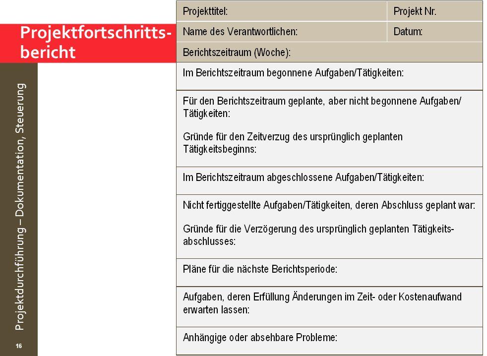© Wytrzens Projektdurchführung – Dokumentation, Steuerung Projektfortschritts- bericht 16