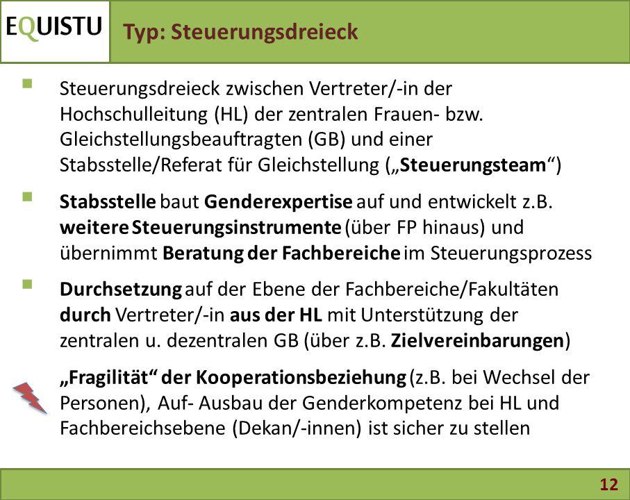 12 Typ: Steuerungsdreieck  Steuerungsdreieck zwischen Vertreter/-in der Hochschulleitung (HL) der zentralen Frauen- bzw. Gleichstellungsbeauftragten