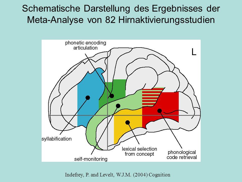 Schematische Darstellung des Ergebnisses der Meta-Analyse von 82 Hirnaktivierungsstudien Indefrey, P.