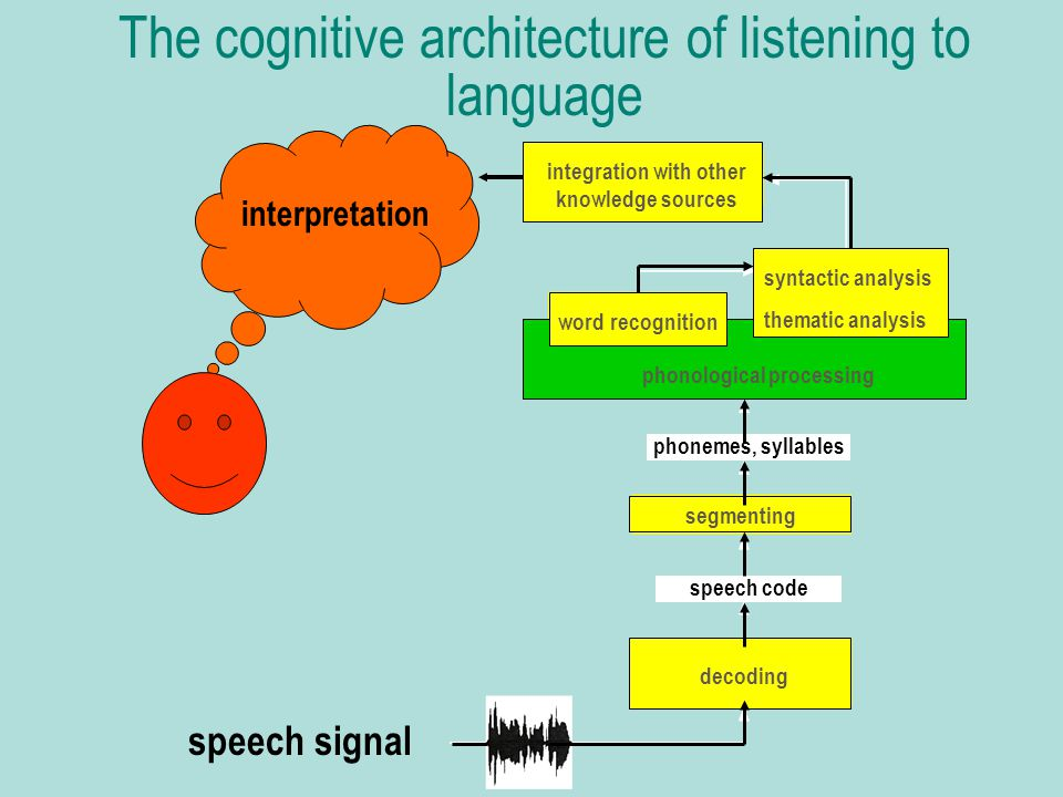 The cognitive architecture of listening to language speech signal interpretation decoding segmenting speech code phonemes, syllables phonological processing word recognition syntactic analysis thematic analysis integration with other knowledge sources