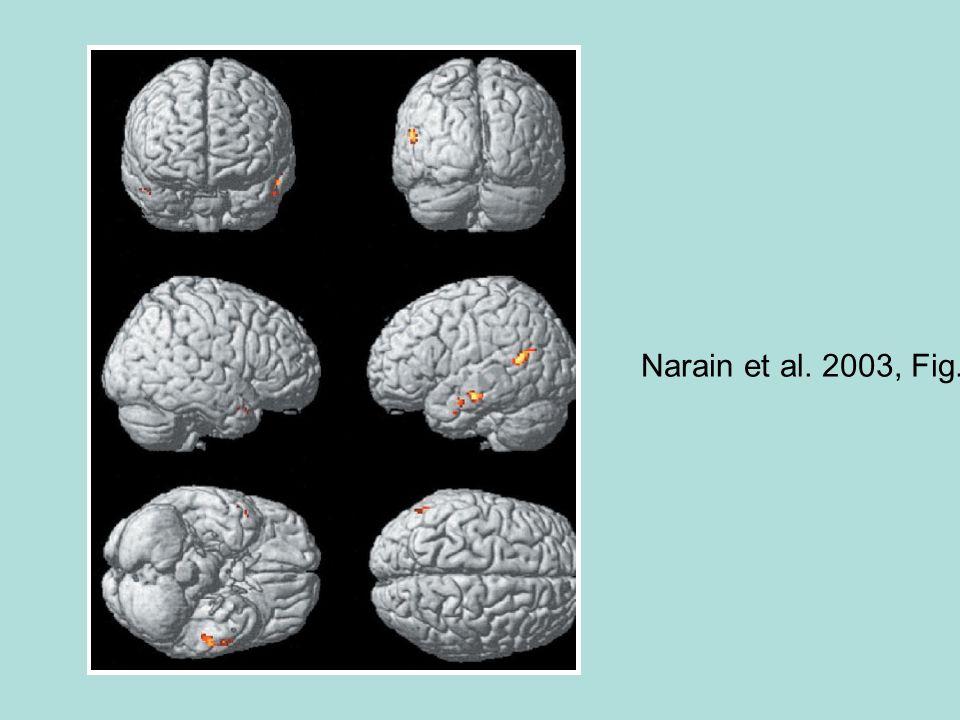 Narain et al. 2003, Fig. 2