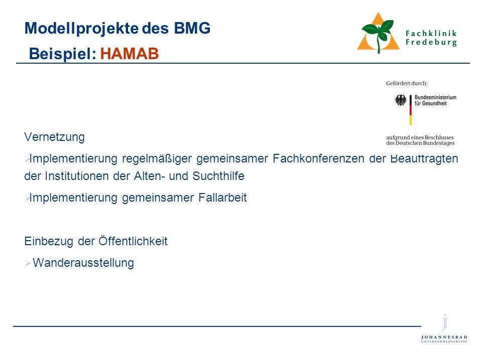 Modellprojekte des BMG Beispiel: HAMAB Vernetzung  Implementierung regelmäßiger gemeinsamer Fachkonferenzen der Beauftragten der Institutionen der Al