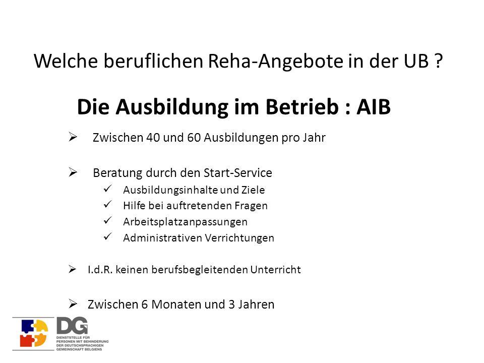 Welche beruflichen Reha-Angebote in der UB ? Die Ausbildung im Betrieb : AIB  Zwischen 40 und 60 Ausbildungen pro Jahr  Beratung durch den Start-Ser