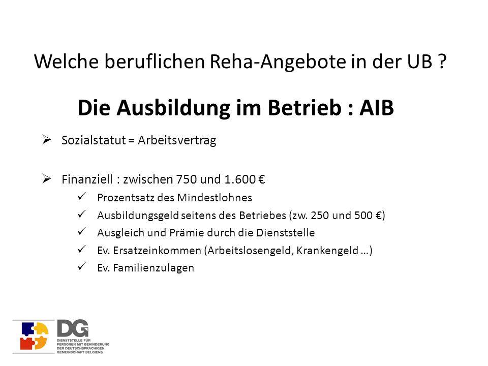 Welche beruflichen Reha-Angebote in der UB ? Die Ausbildung im Betrieb : AIB  Sozialstatut = Arbeitsvertrag  Finanziell : zwischen 750 und 1.600 € P