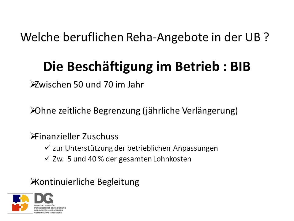 Welche beruflichen Reha-Angebote in der UB ? Die Beschäftigung im Betrieb : BIB  Zwischen 50 und 70 im Jahr  Ohne zeitliche Begrenzung (jährliche Ve