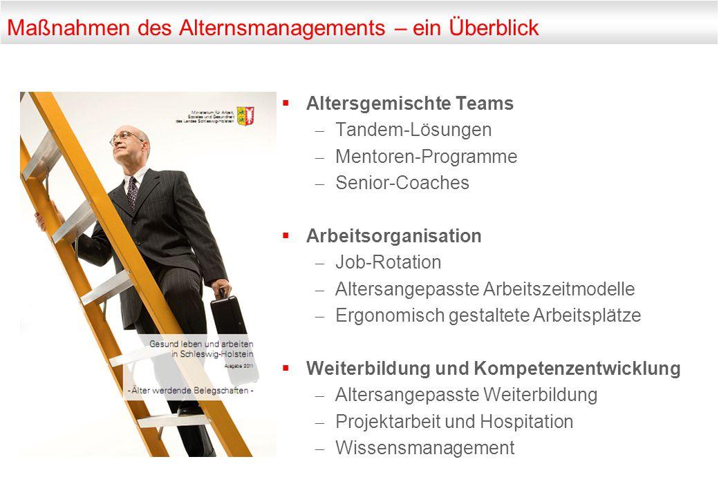 Maßnahmen des Alternsmanagements – ein Überblick  Altersgemischte Teams  Tandem-Lösungen  Mentoren-Programme  Senior-Coaches  Arbeitsorganisation