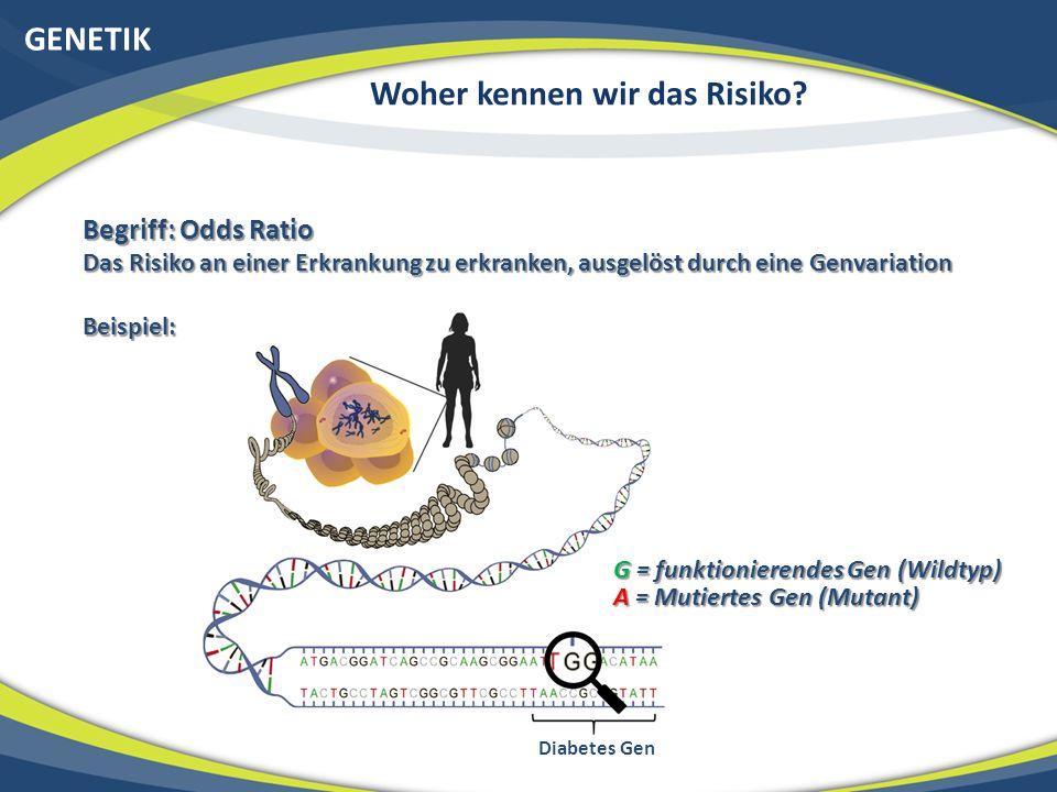 GENETIK Woher kennen wir das Risiko? Begriff: Odds Ratio Das Risiko an einer Erkrankung zu erkranken, ausgelöst durch eine Genvariation Beispiel: G =