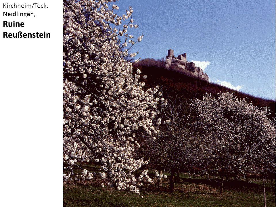 Kirchheim/Teck, Neidlingen, Ruine Reußenstein