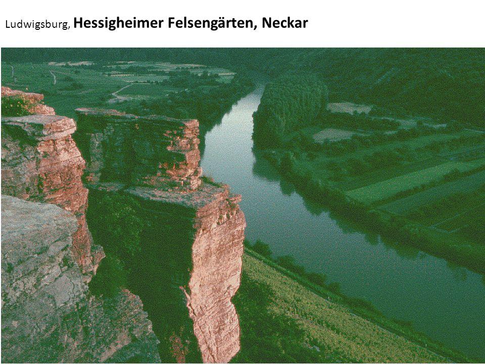 Ludwigsburg, Hessigheimer Felsengärten, Neckar