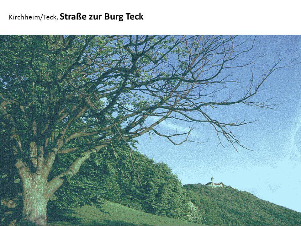 Kirchheim/Teck, Neidlingen, Ruine Reußenstein vom Tal