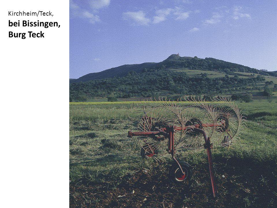 Kirchheim/Teck, im Tal westlich von Burg Teck