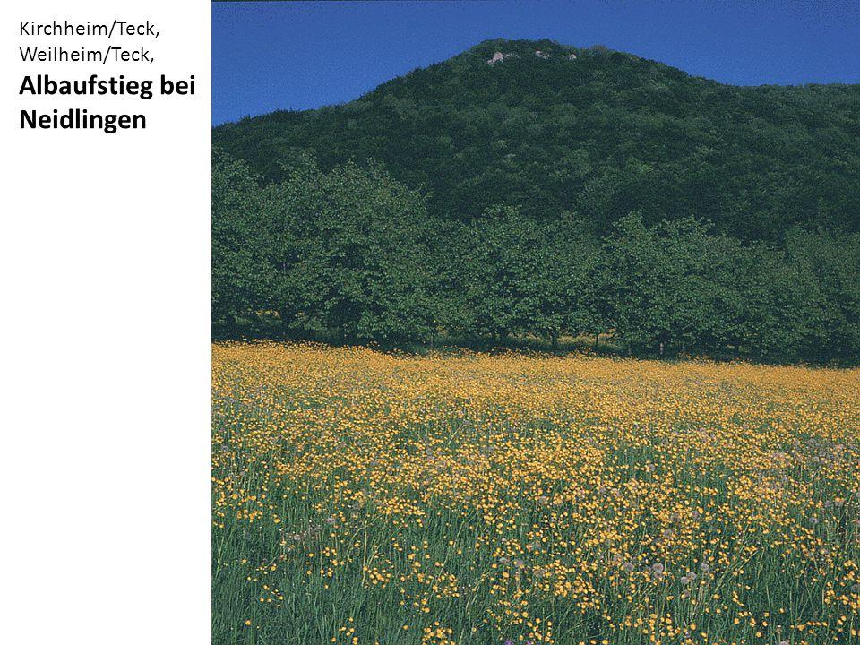 Kirchheim/Teck, Weilheim/Teck, Albaufstieg bei Neidlingen