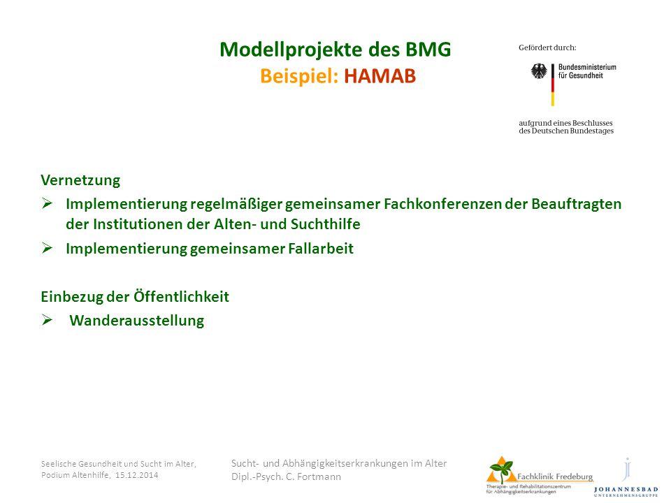 Seelische Gesundheit und Sucht im Alter, Podium Altenhilfe, 15.12.2014 Modellprojekte des BMG Beispiel: HAMAB Vernetzung  Implementierung regelmäßige