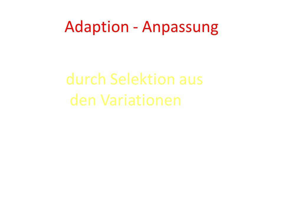 Adaption - Anpassung durch Selektion aus den Variationen