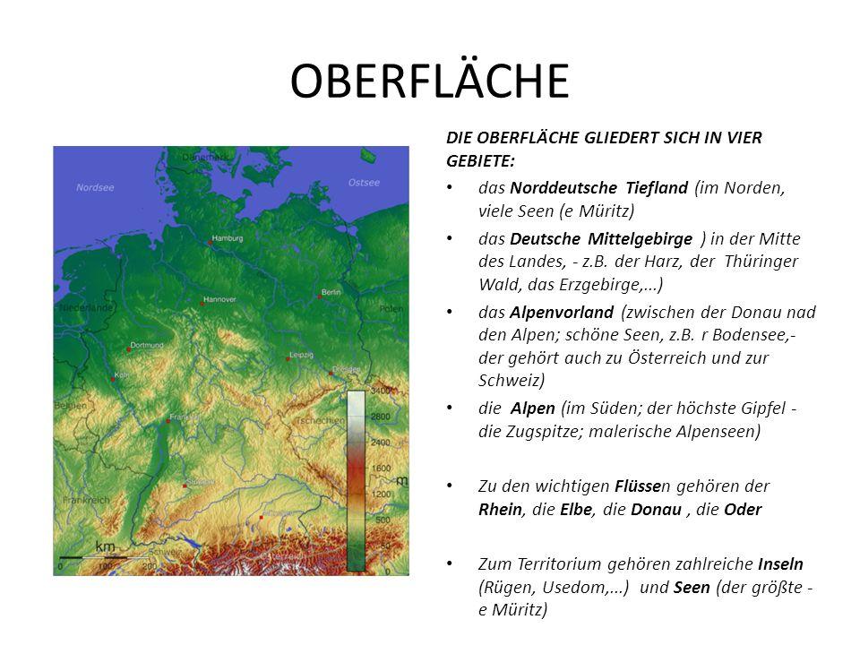 OBERFLÄCHE DIE OBERFLÄCHE GLIEDERT SICH IN VIER GEBIETE: das Norddeutsche Tiefland (im Norden, viele Seen (e Müritz) das Deutsche Mittelgebirge ) in d