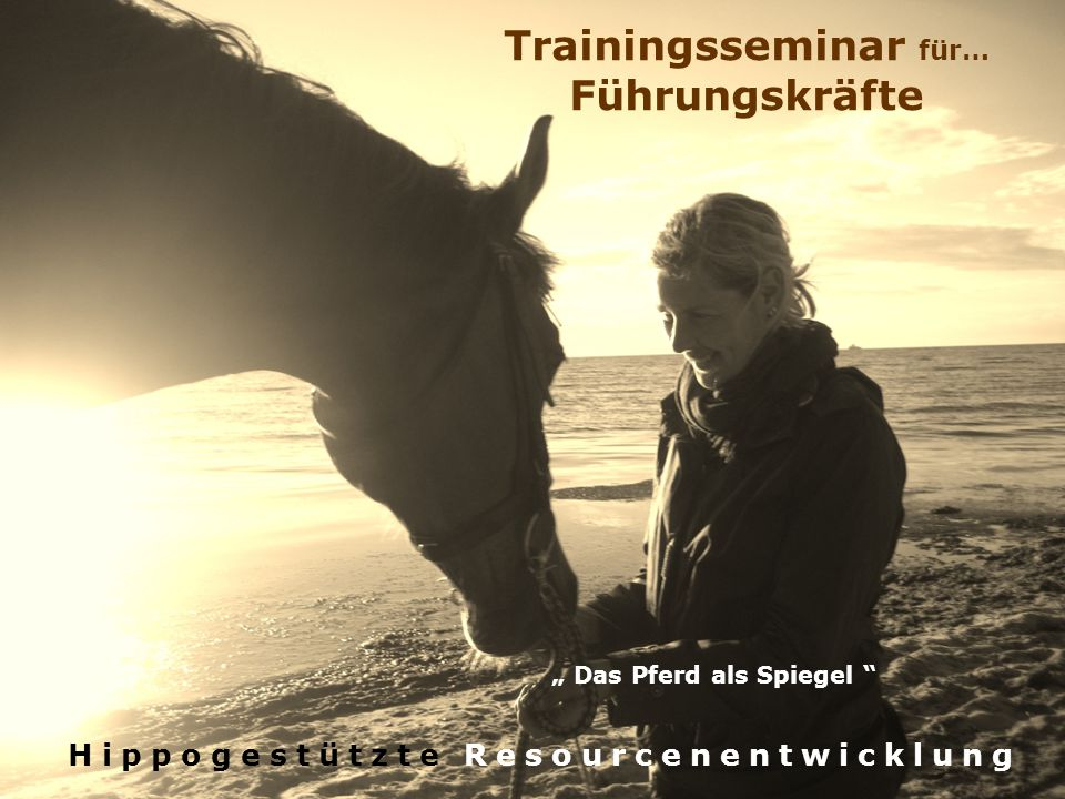 """Hippogestützte Resourcenentwicklung """" Das Pferd als Spiegel """" Trainingsseminar für… Führungskräfte"""