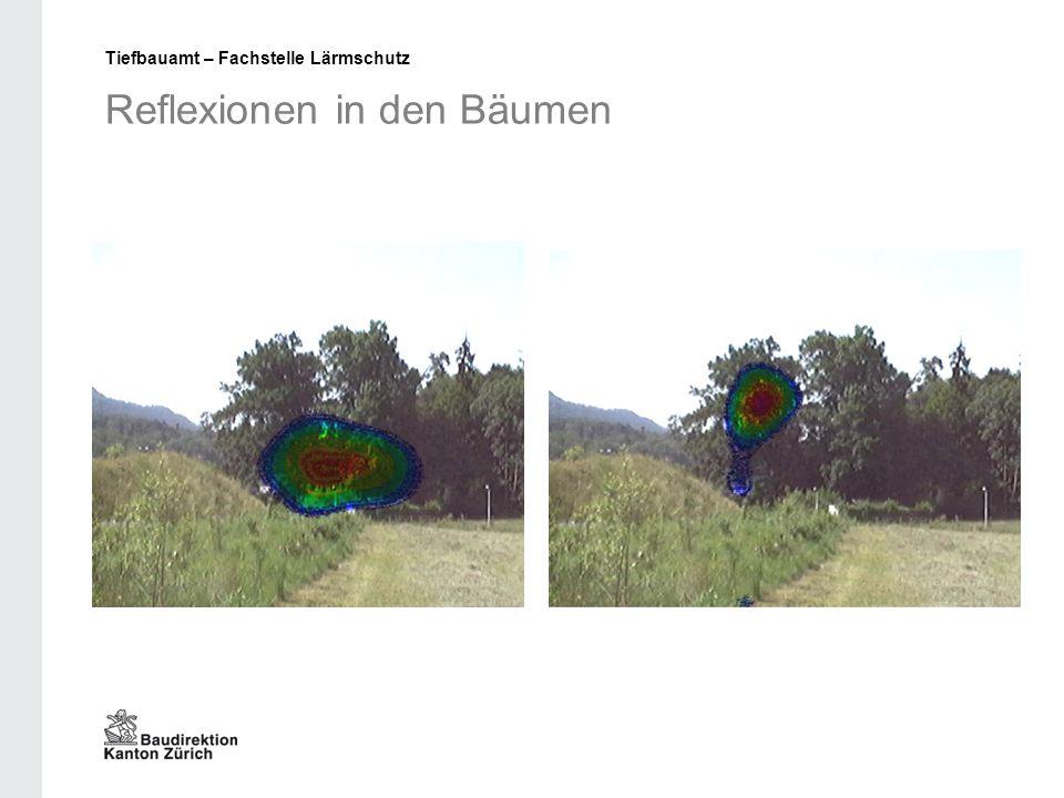 Reflexionen in den Bäumen Tiefbauamt – Fachstelle Lärmschutz