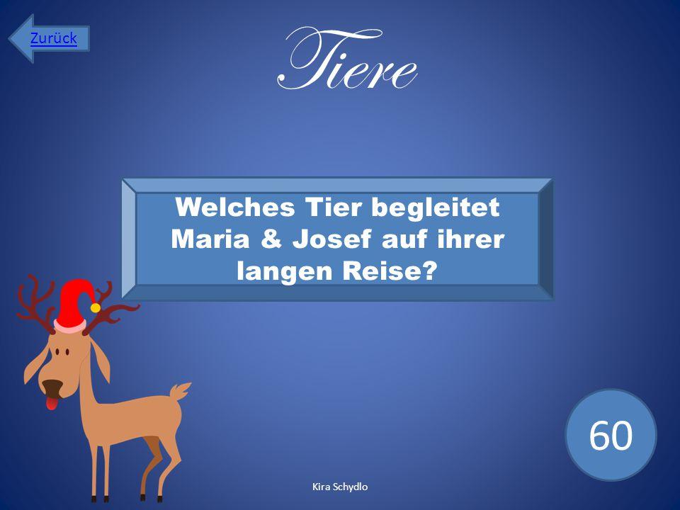 Tiere Welches Tier begleitet Maria & Josef auf ihrer langen Reise? 60 Zurück Kira Schydlo