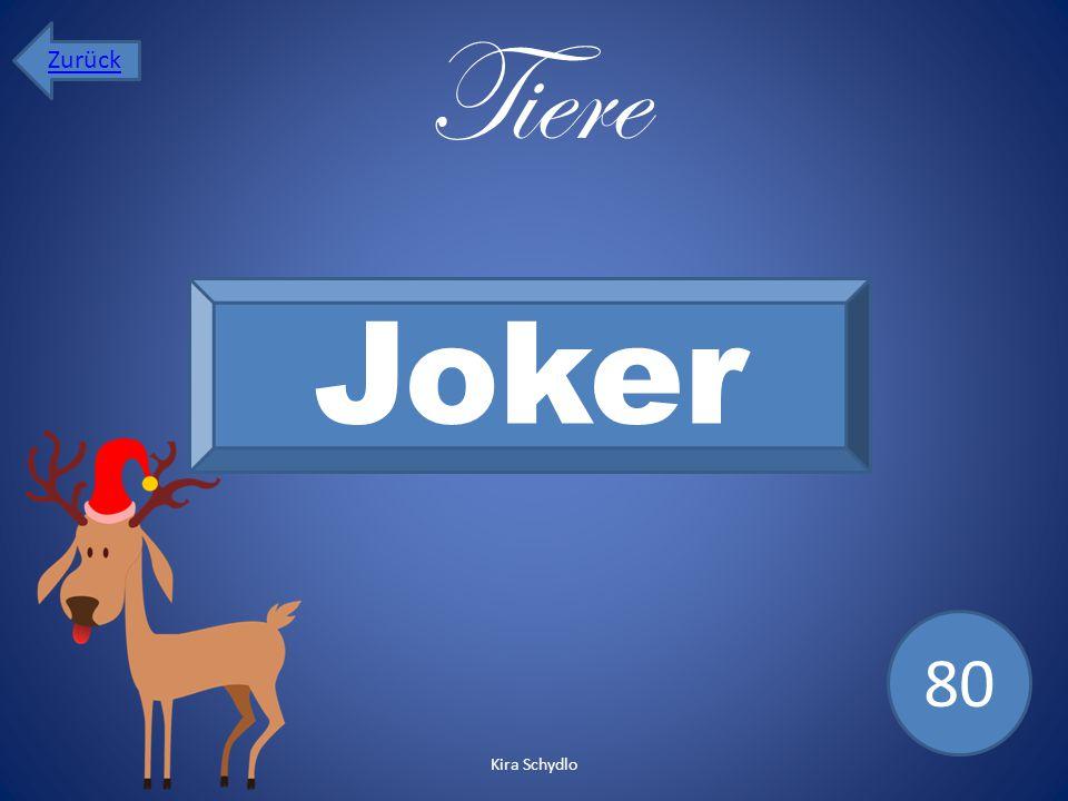 Tiere Joker 80 Zurück Kira Schydlo
