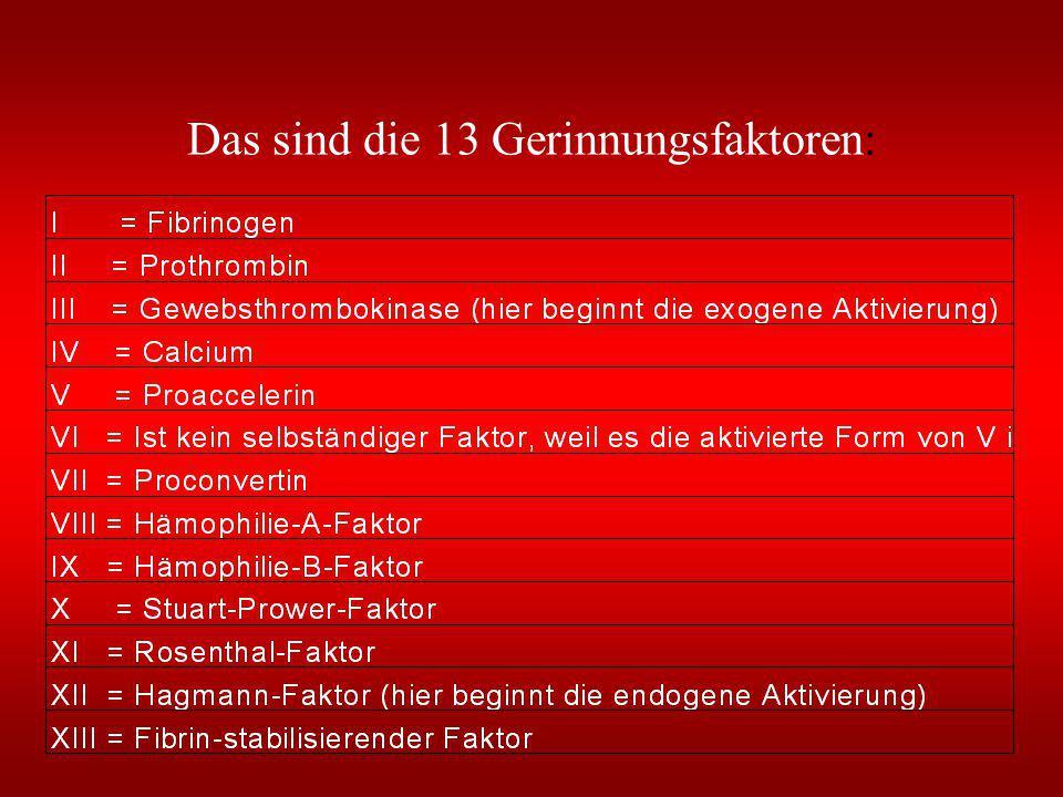 Blutgerinnungsfaktoren