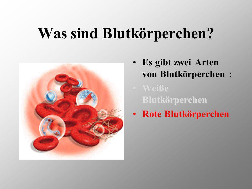Blutkörperch en Von Mecki, Luki, Domdi & Röhri