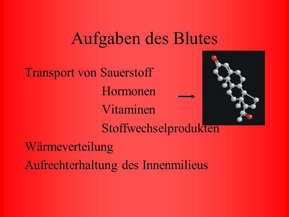 Blutuntersuchungen von Otto von Wesendonk Mike Roxas Nikolaus Ehn Fabian Bauer