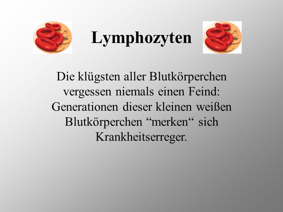 Weiße Blutkörperchen Weiße Blutkörperchen (Leukozyten) gehören zum Abwehrsystems des Körpers. Sie sind in der Lage, körperfremdes Gewebe und Zellen, a