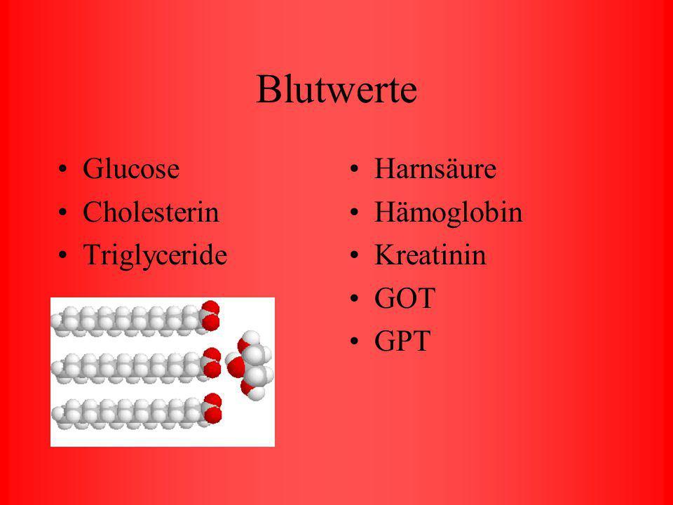 Enzyme Herzenzyme Gallen- und Leberwegsenzyme Verdauungsenzyme Bauchspeicheldrüsenenzyme Muskelenzyme
