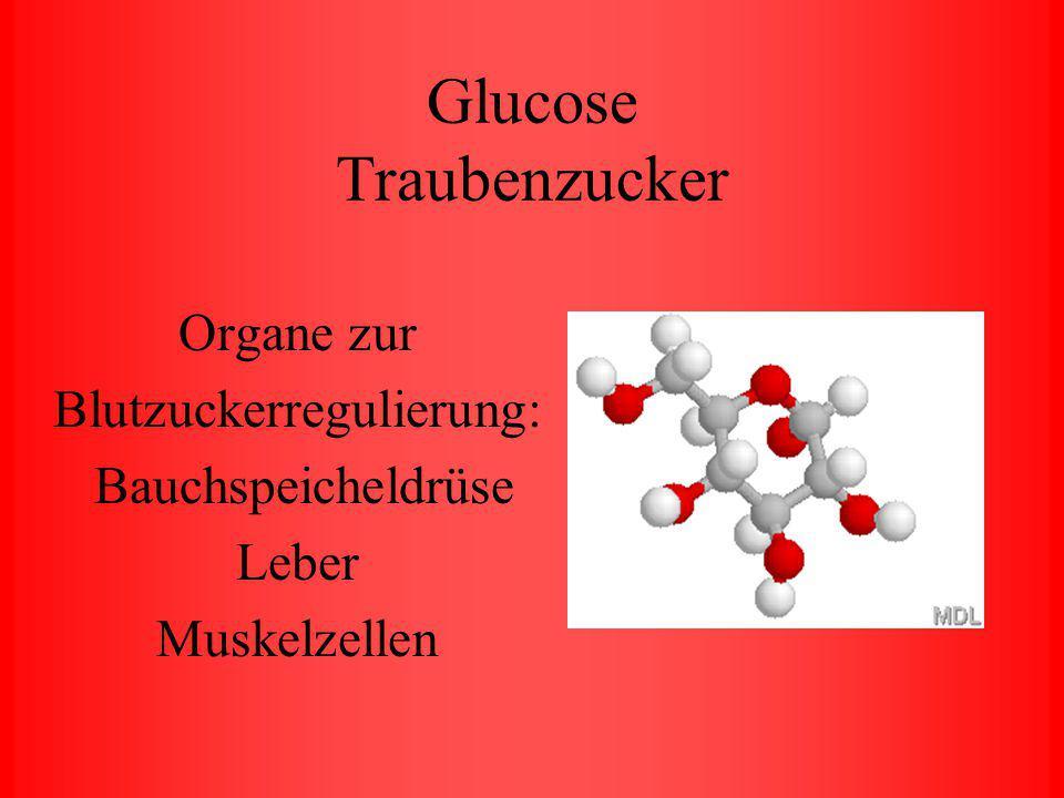 Blutwerte Glucose Cholesterin Triglyceride Harnsäure Hämoglobin Kreatinin GOT GPT