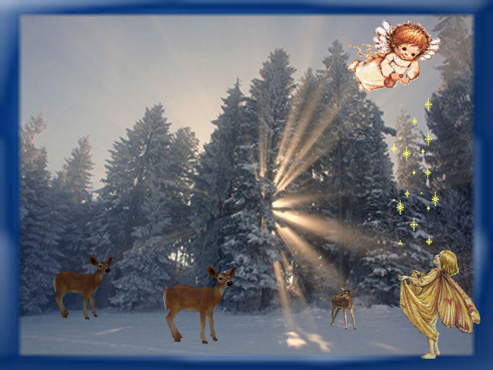Ich wünsche dir fürs neue Jahr das große Glück in kleinen Dosen. Das alte lässt sich ohnehin nicht über Nacht verstoßen.