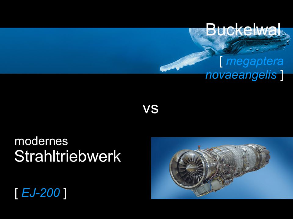 2 Institut für Strahlantriebe und Turboarbeitsmaschinen © 2009 – RWTH Aachen / IST Buckelwal [ megaptera novaeangelis ] [ EJ-200 ] Strahltriebwerk modernes vs
