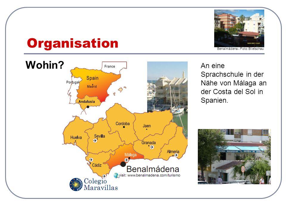 Organisation Wohin? An eine Sprachschule in der Nähe von Málaga an der Costa del Sol in Spanien. Benalmádena - Foto: Blietschau